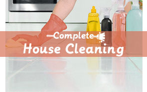 professional cleaning2